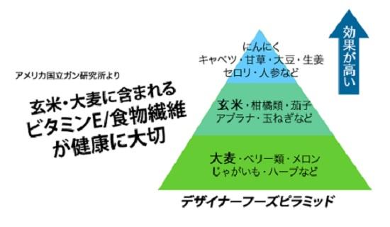 デザイナーフーズピラミッドの画像
