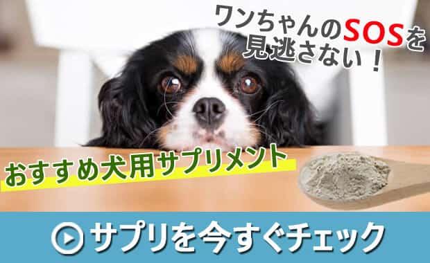 犬用サプリメントバナー