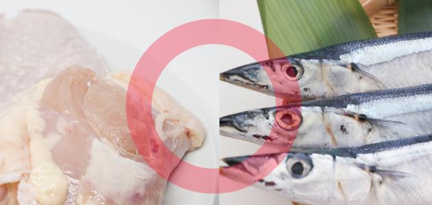 主原料がお肉またはお魚のもの
